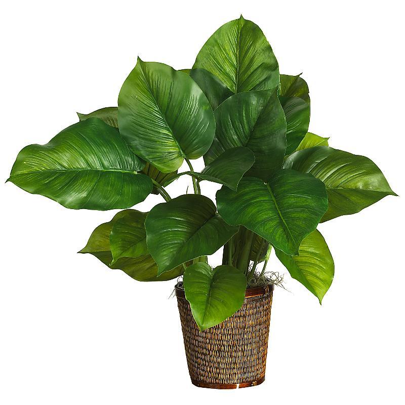 Plant - HD1500×1500